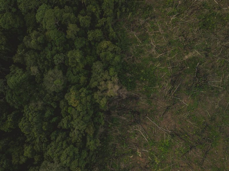 Aerial view of Amazon deforestation, municipality of Calamar, Guaviare Department, Colombia.